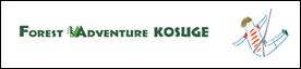 Forest Adventure Kosuge